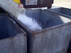 Flake Ice is Conveyed into Totes for Fish